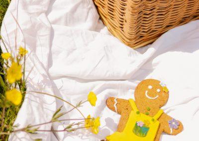 Gingerbread man biscuit on picnic blanket