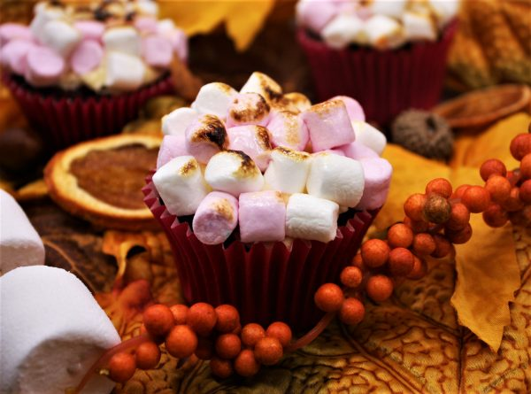 autumn toasted marshmallow cupcake with berries, leaves and marshmallow