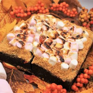 autumn smores brownies sat on leaves square crop